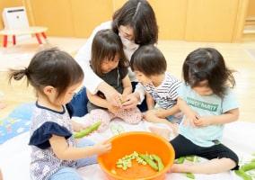 乳児クラスの皆でそら豆をむく