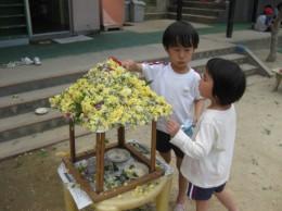花摘み 069