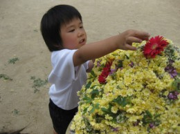 花摘み 067