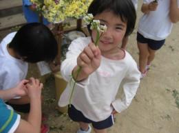 花摘み 064